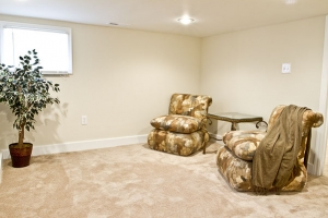 4210-annatana-avenue-basement-2